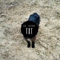 СВ Хутор выпустил макси-сингл и анонсировал альбом