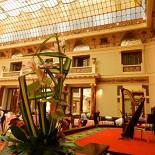 Ресторан Метрополь - фотография 4 - Вечером играет арфистка