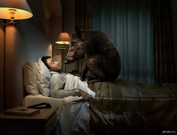 Испытать во сне сильный страх
