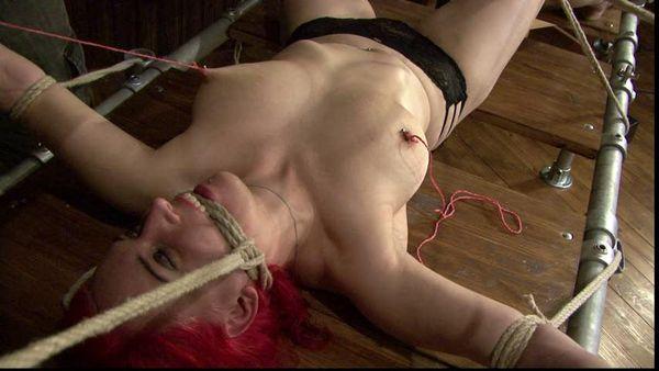 All free lesbian erotic videos