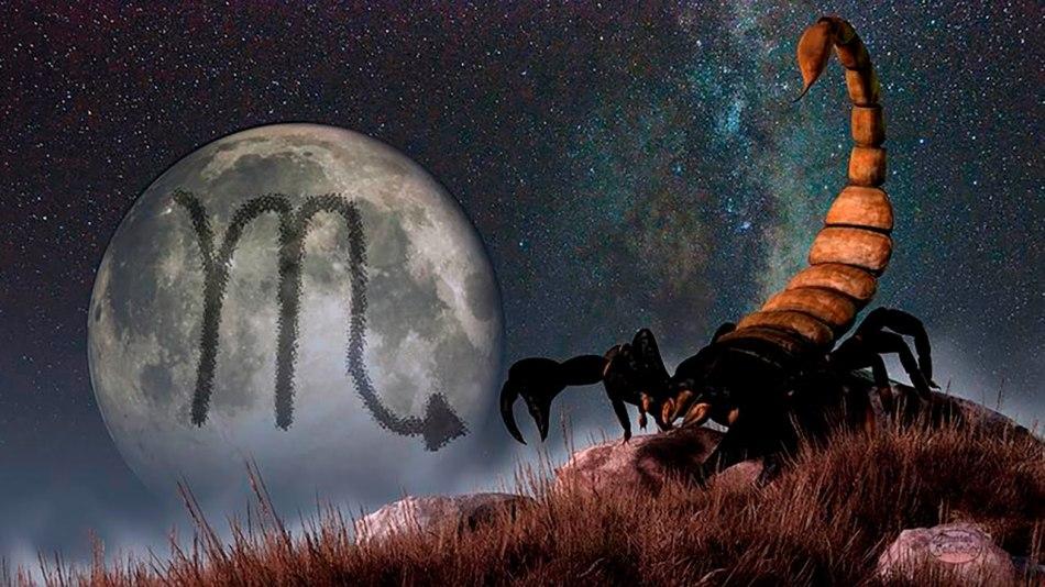 Гороскоп   вечер скорпион женщи  любовный что будет