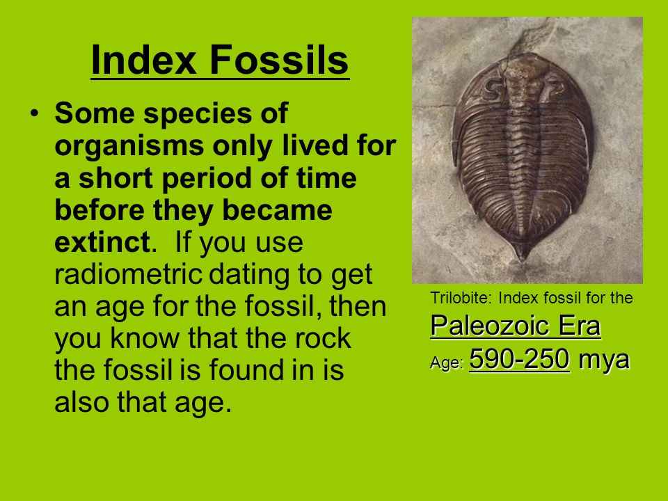 8.4 absolute dating of rocks and fossils answers