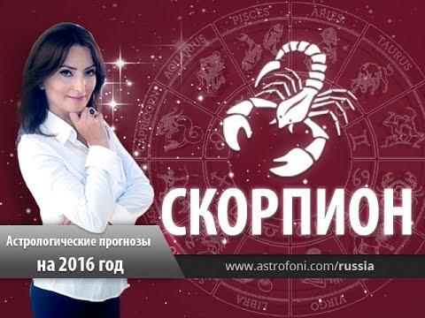 Гороскоп скорпион женщи  от василисы видео