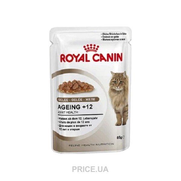 Корм royal canin желе или соус