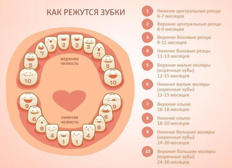 У ребенка шатается молочный зуб: что делать, как