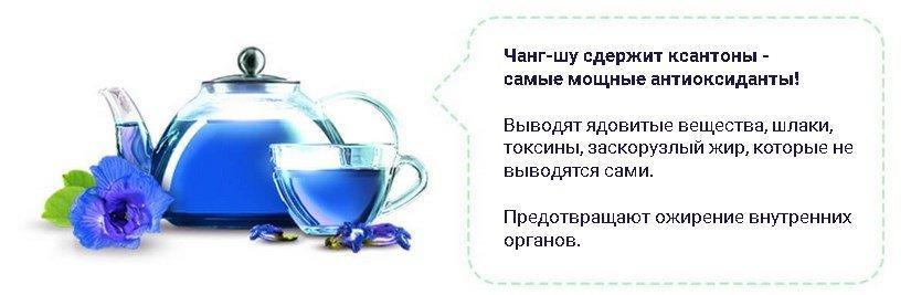 Чай чанг шу это правда противопоказания