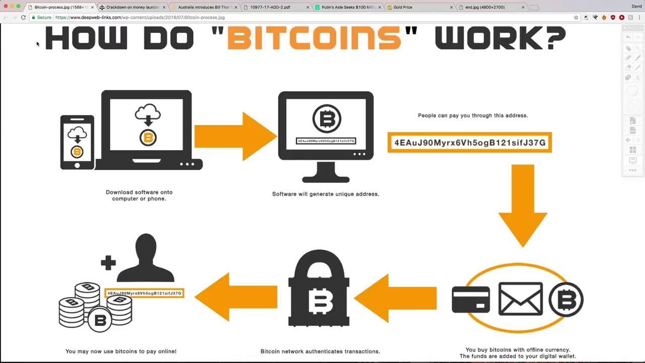 bitcoin network down