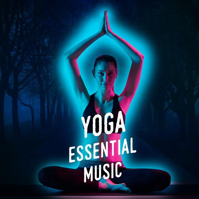 Хайп проекты 2018 йога