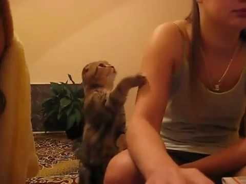 Видео смотреть русское нежное порно