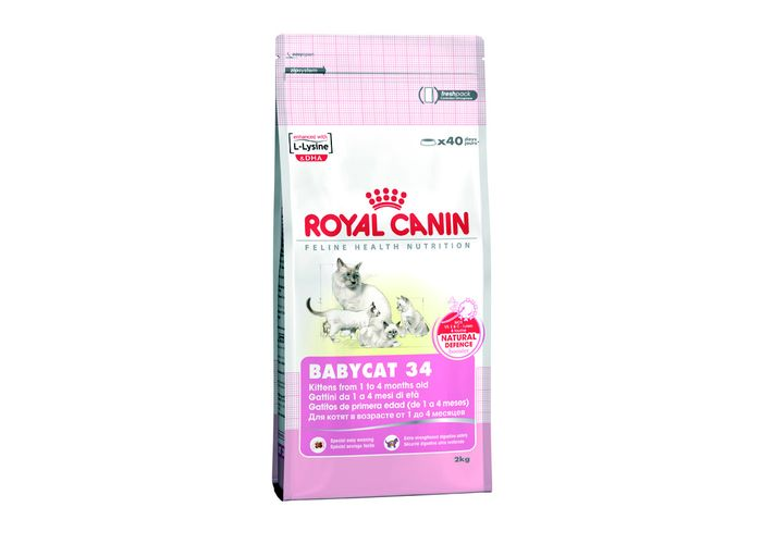 Корм royal canin 34 kitten