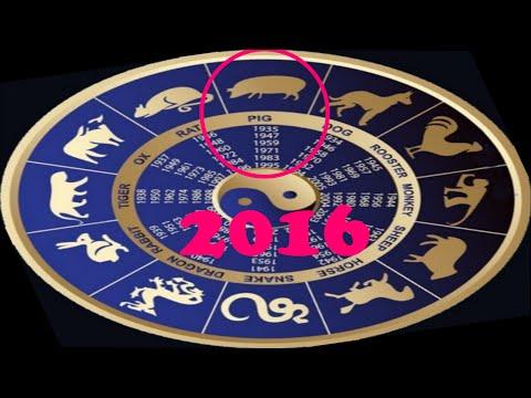Гороскоп   2018 год свинья овен женщи