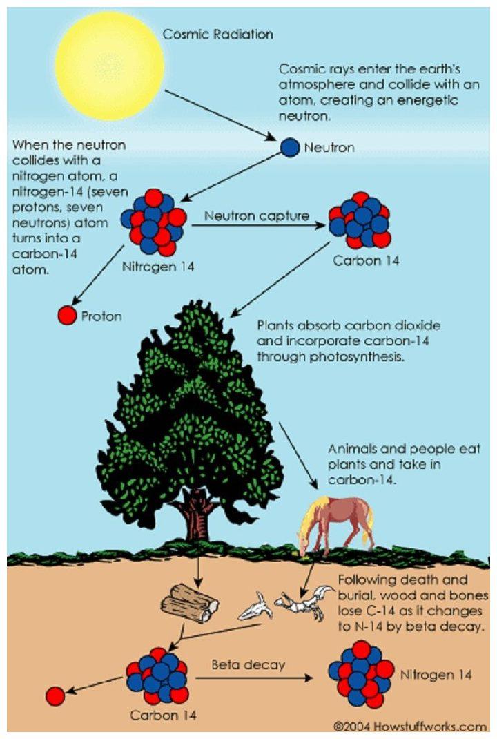 Ano ang radiocarbon dating analysis