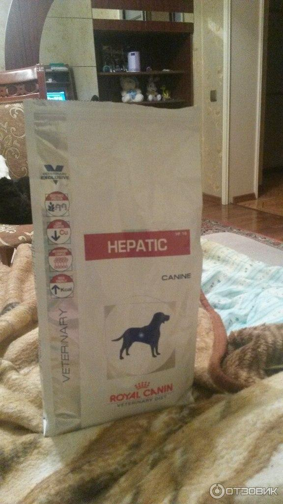 Корм royal canin hepatic новосибирск
