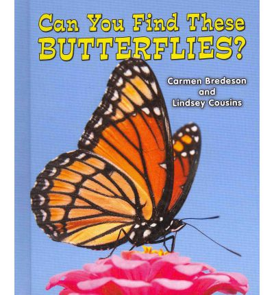 Wing Plucked Butterfly PDF Download - pbageorg