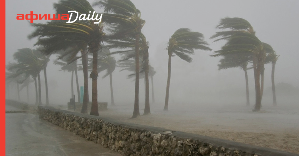 Tesla увеличила емкость аккумуляторов электромобилей во Флориде, чтобы их владельцы смогли уехать от урагана «Ирма»