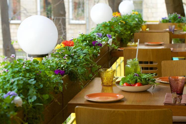 Ресторан Грузин - фотография 24 - Зеленая и уютная веранда ресторана.