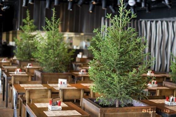Ресторан Елки - фотография 10