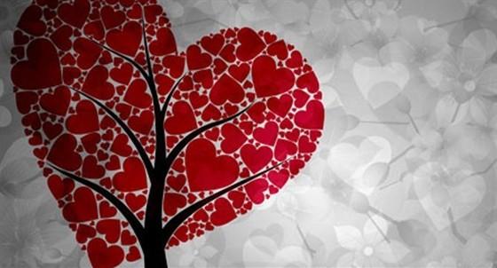 Любовь вопреки смотреть фото
