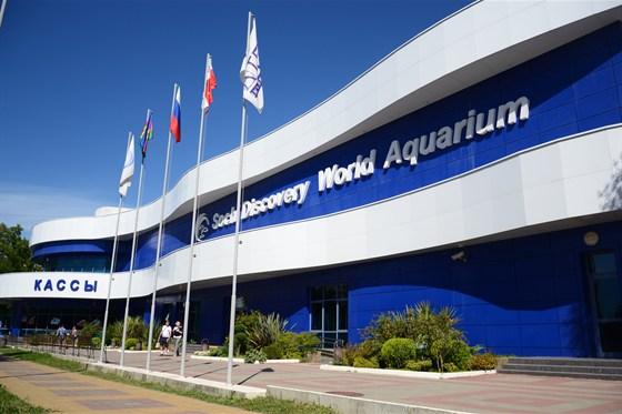 Фото музей Sochi Discovery World Aquarium