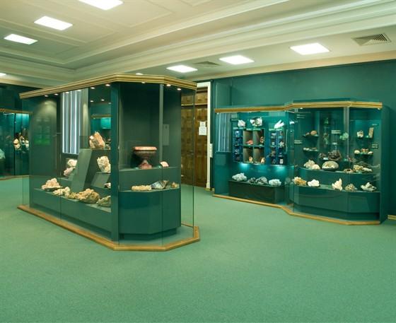 Фото музей естественной истории Татарстана