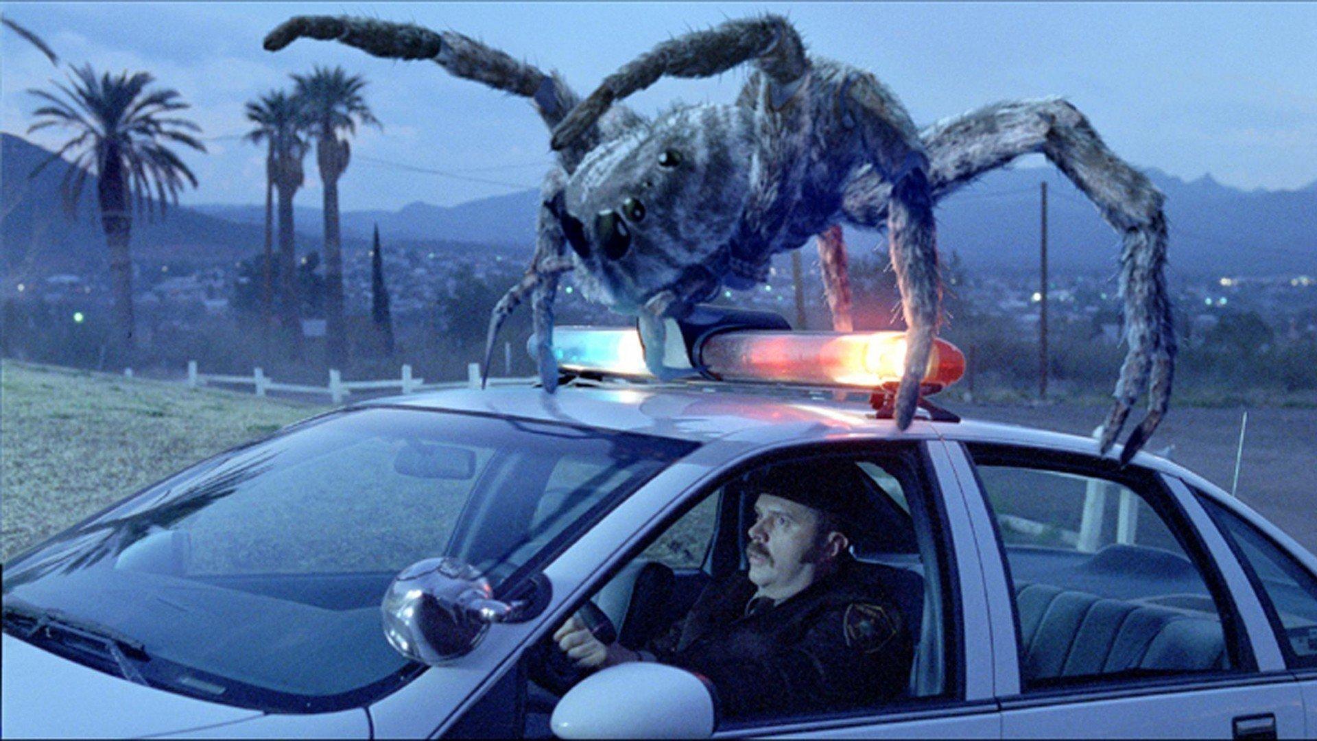 Атака пауков смотреть фото