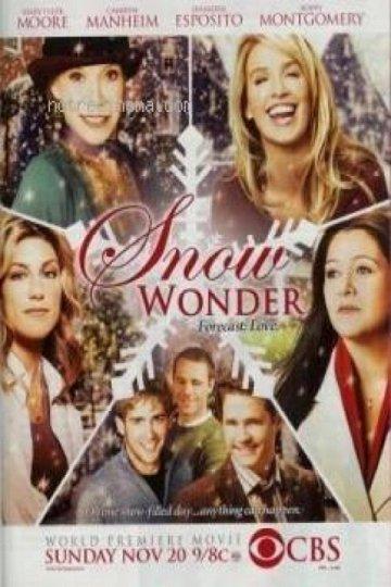 Постер Снежное чудо