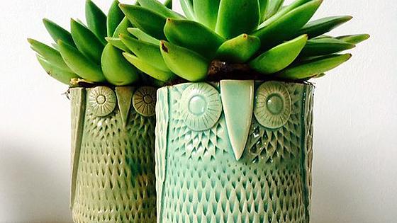 XVII Фестиваль керамики и гончарного дела «Красота, рожденная в огне»
