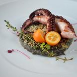 Ресторан Голубка - фотография 3 - Осьминог на подушке из поленты с чернилами каракатицы