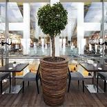 Ресторан Вермишель - фотография 5
