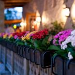 Ресторан Кавказская пленница - фотография 5 - Балкончик на Летней веранде