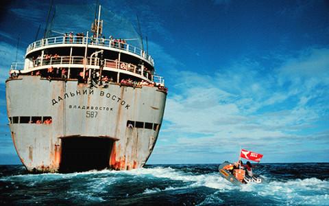 «Как изменить мир»: деревянный корабль, с которого начался Greenpeace