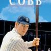 Кобб: Путь домой (Cobb)