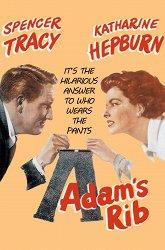 Постер Ребро Адама