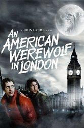 Постер Американский оборотень в Лондоне
