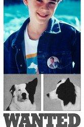 Постер Собачий секрет