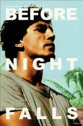 Постер Пока не наступит ночь