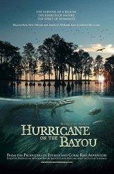 Постер Ураган на Байу