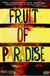 Вкушаем плоды райских кущ / Ovoce stromů rajských jíme
