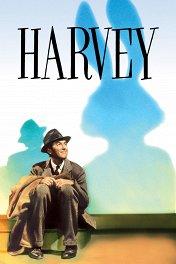 Харви / Harvey