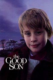 Хороший сын / The Good Son