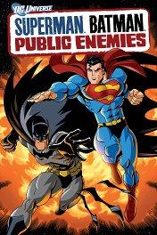 Супермен/Бэтмен: Враги общества / Superman/Batman: Public Enemies