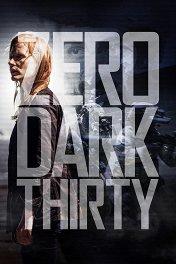 Цель номер один / Zero Dark Thirty