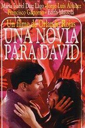 Невеста для Давида / Una novia para David