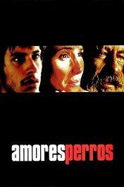 Сука-любовь / Amores perros