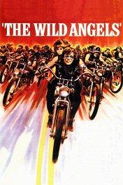 Дикие ангелы / The Wild Angels