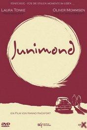 Июньская Луна / Junimond