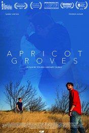 Абрикосовые рощи / Apricot Groves