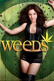 Дурман / Weeds