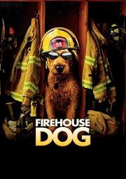 Постер Пожарный пес