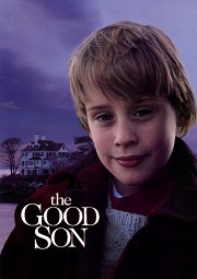Постер Хороший сын